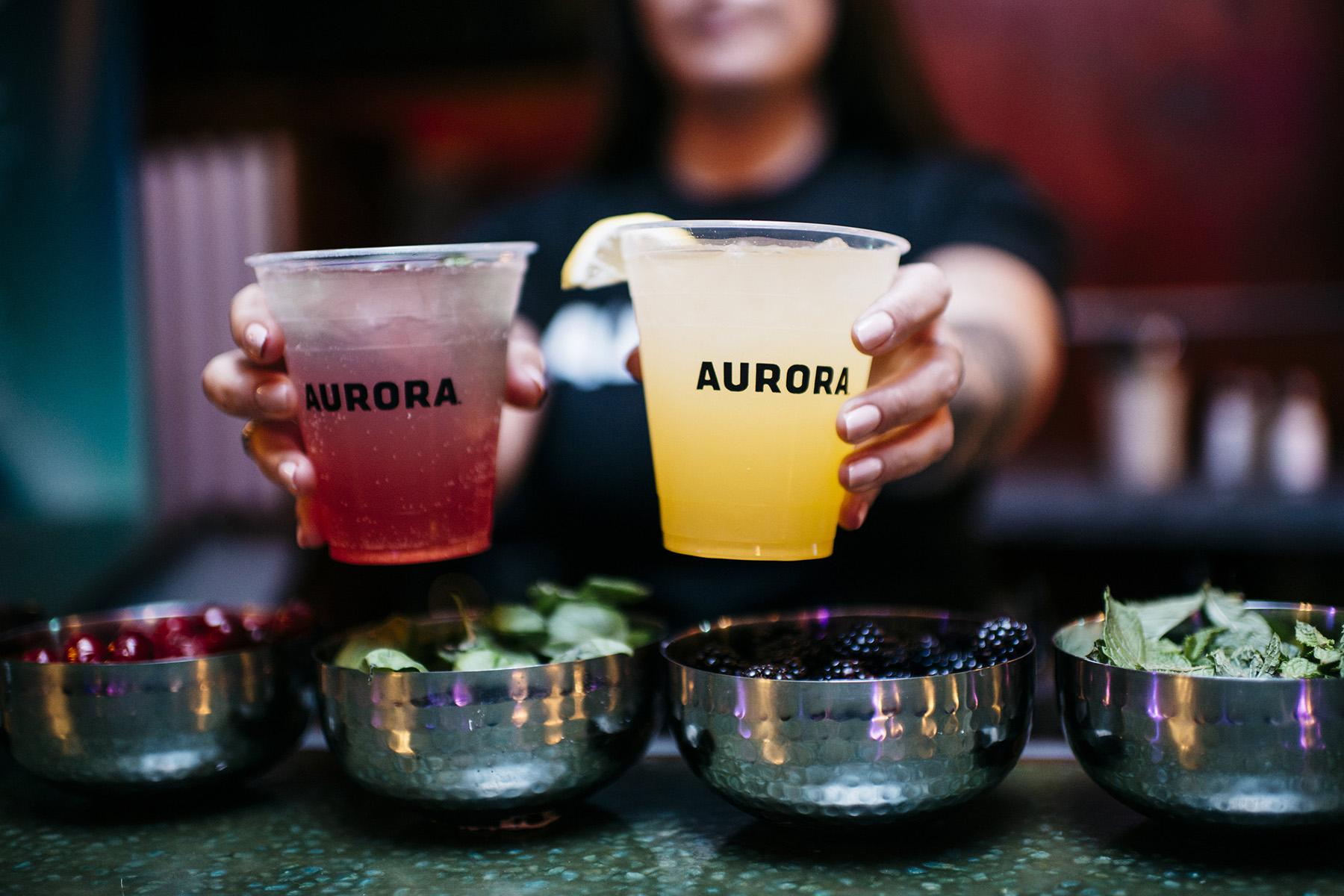 aurora-case-study-3
