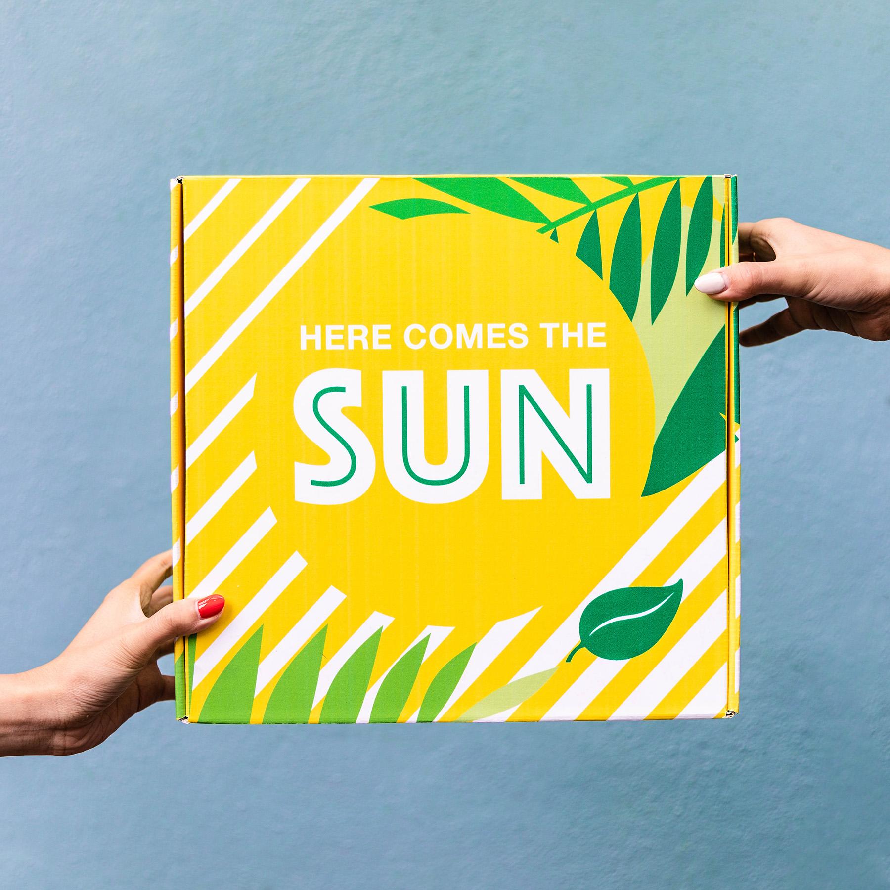 sunshine-box-case-study-3