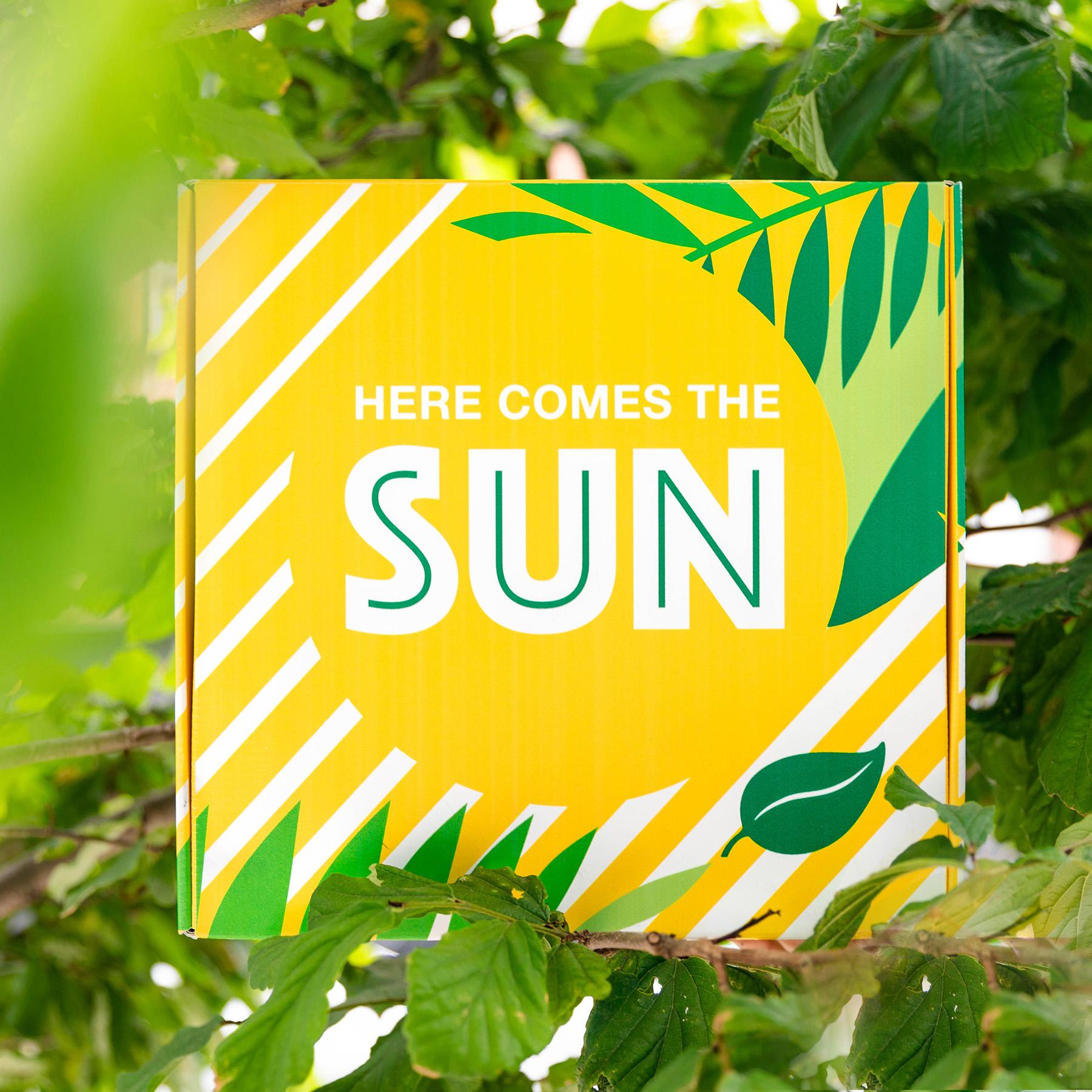sunshine-box-case-study-9